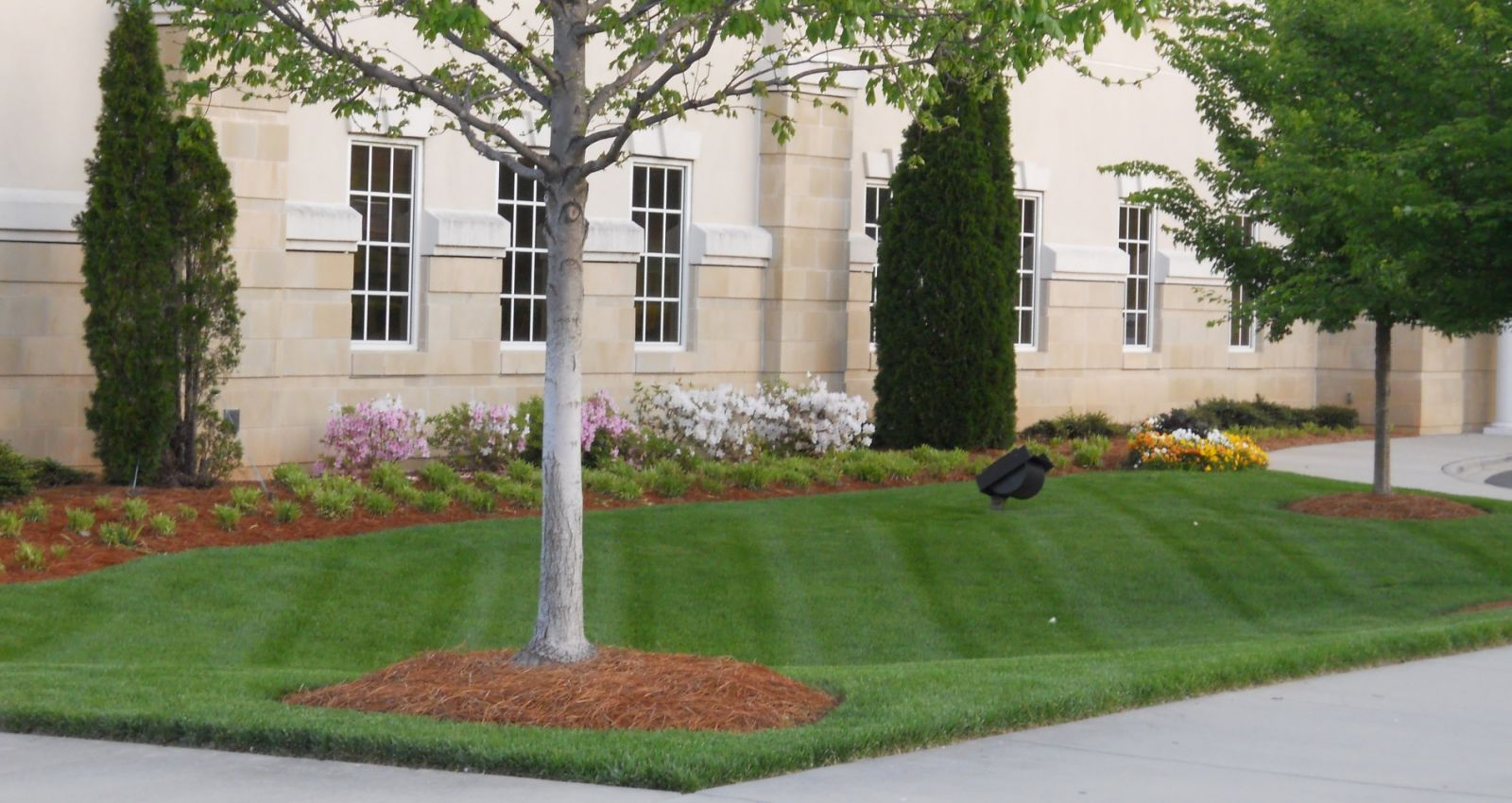 Charlotte Landscaping Solutions Installation Maintenance The Byrd S Group